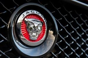 2014-jaguar-xj_100436087_l